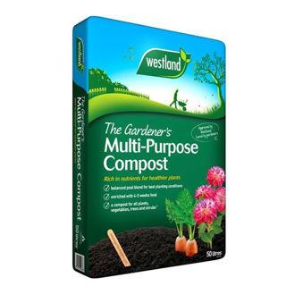 Multi Purpose Compost 50L Bag